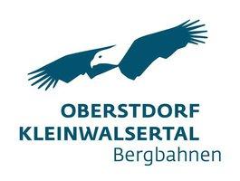 logo Ifen
