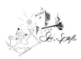 logo Falkenstein