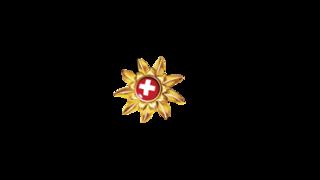 logo Eggli / La Videmanette – Gstaad / Saanen / Rougemont
